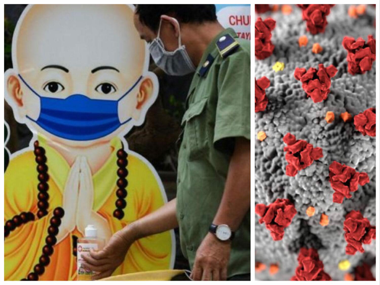 Tulpina din Vietnam. Cât de periculoasă este și ce vaccin anti-COVID are efect împotriva ei