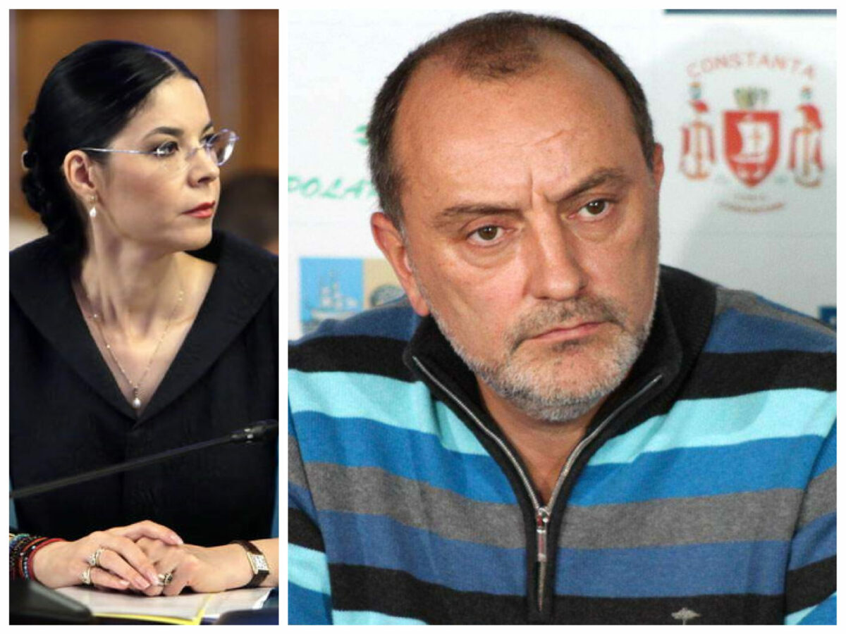 """Ana Birchall despre fuga tovarășului lui Radu Mazăre în Italia: """"Stelian Ion, trezirea!"""""""