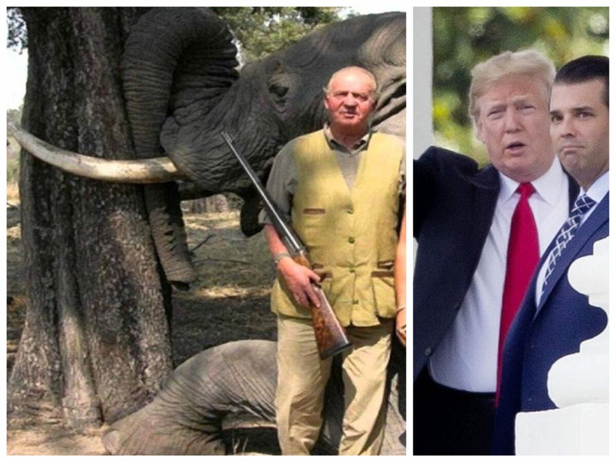 """""""Fiul lui Trump a vânat acum doi ani, în România. Regele Juan Carlos, acum 5 ani, a ucis ursoaice gestante"""""""